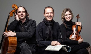Haydn-Chamber-Ensemble-Haydn-Mozart-Schubert-CD